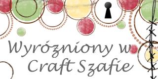 02/2014 Award für die eingereichte Arbeit von Craft Szafa