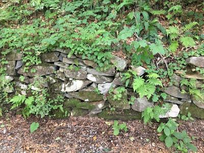 国道291号脇の石垣遺構