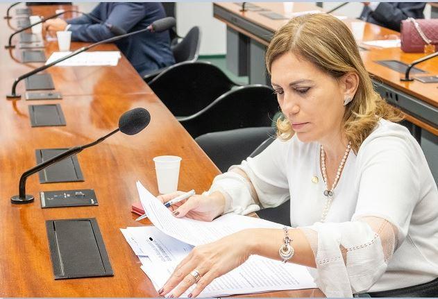 Terminais de pesca de Santos e Cananéia serão concedidos em bloco à iniciativa privada