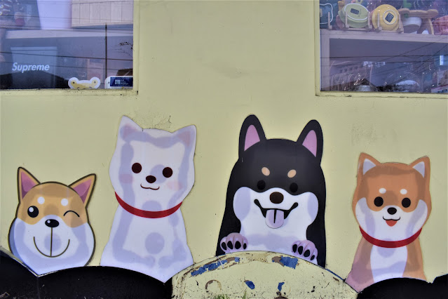 Concord West Street Art | Dog mural