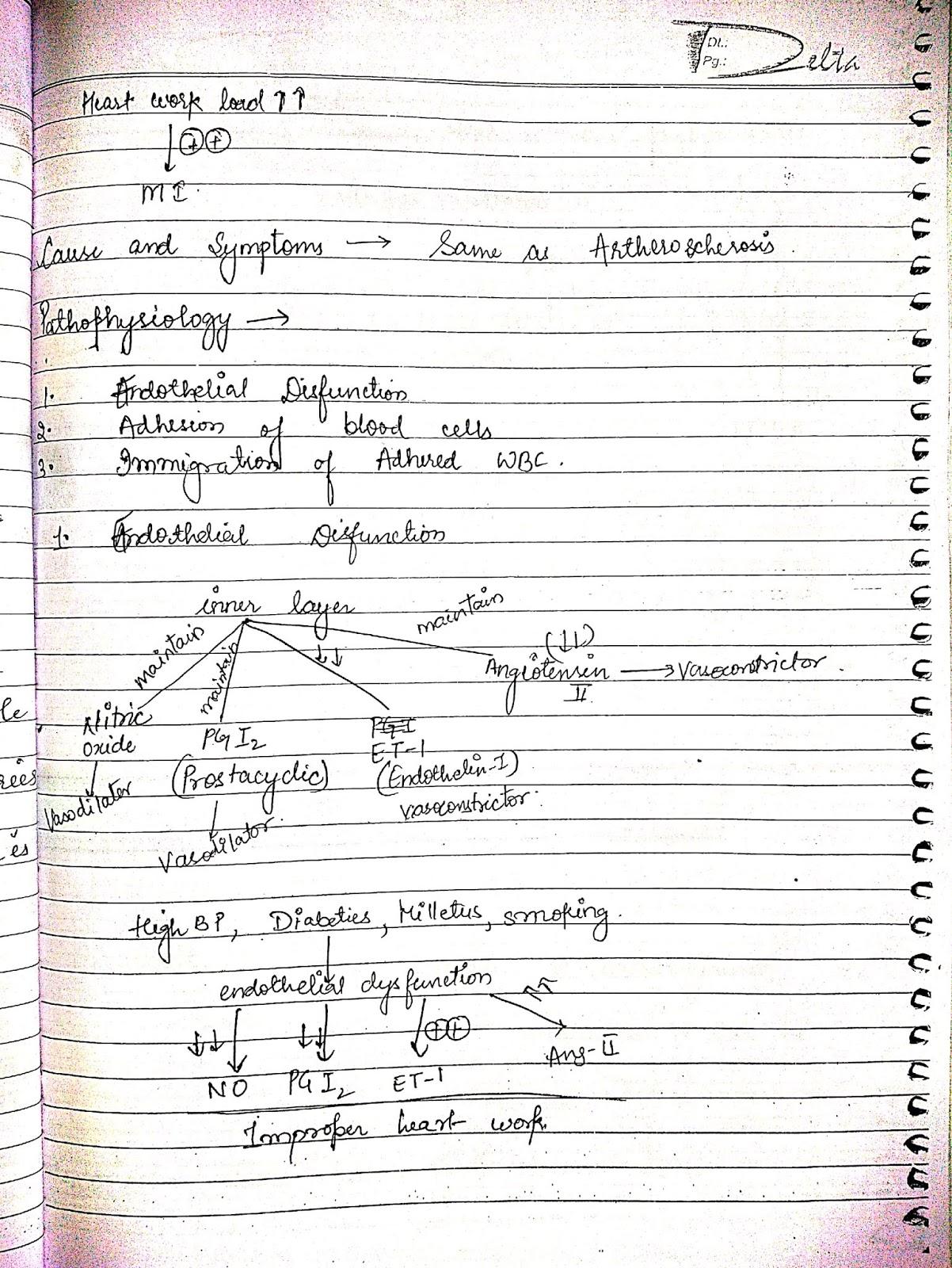pathophysiology - arteosclerosis