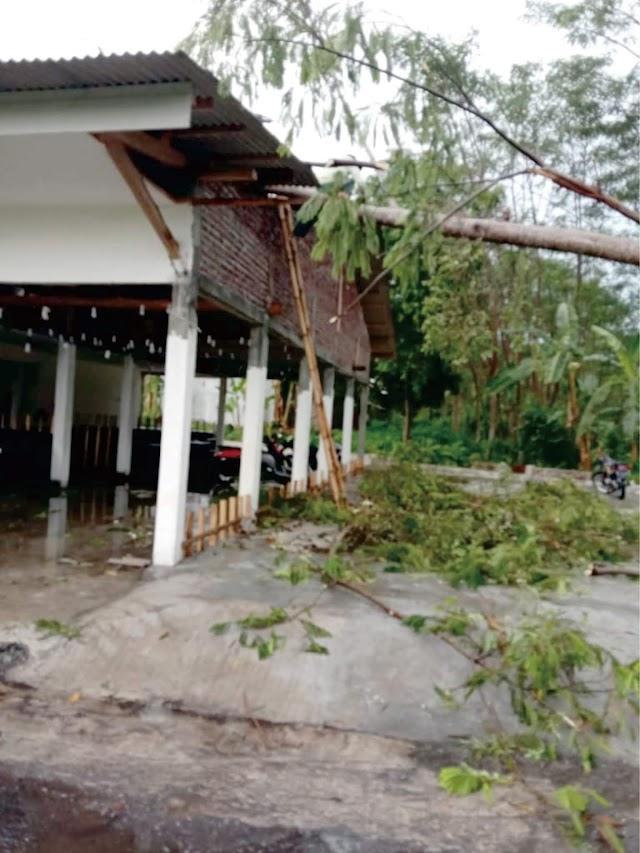 Pohon Sengon Menimpa Tempat Kongkow