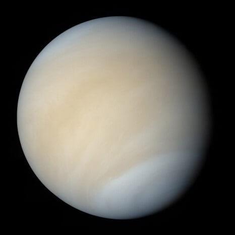 Venus HD
