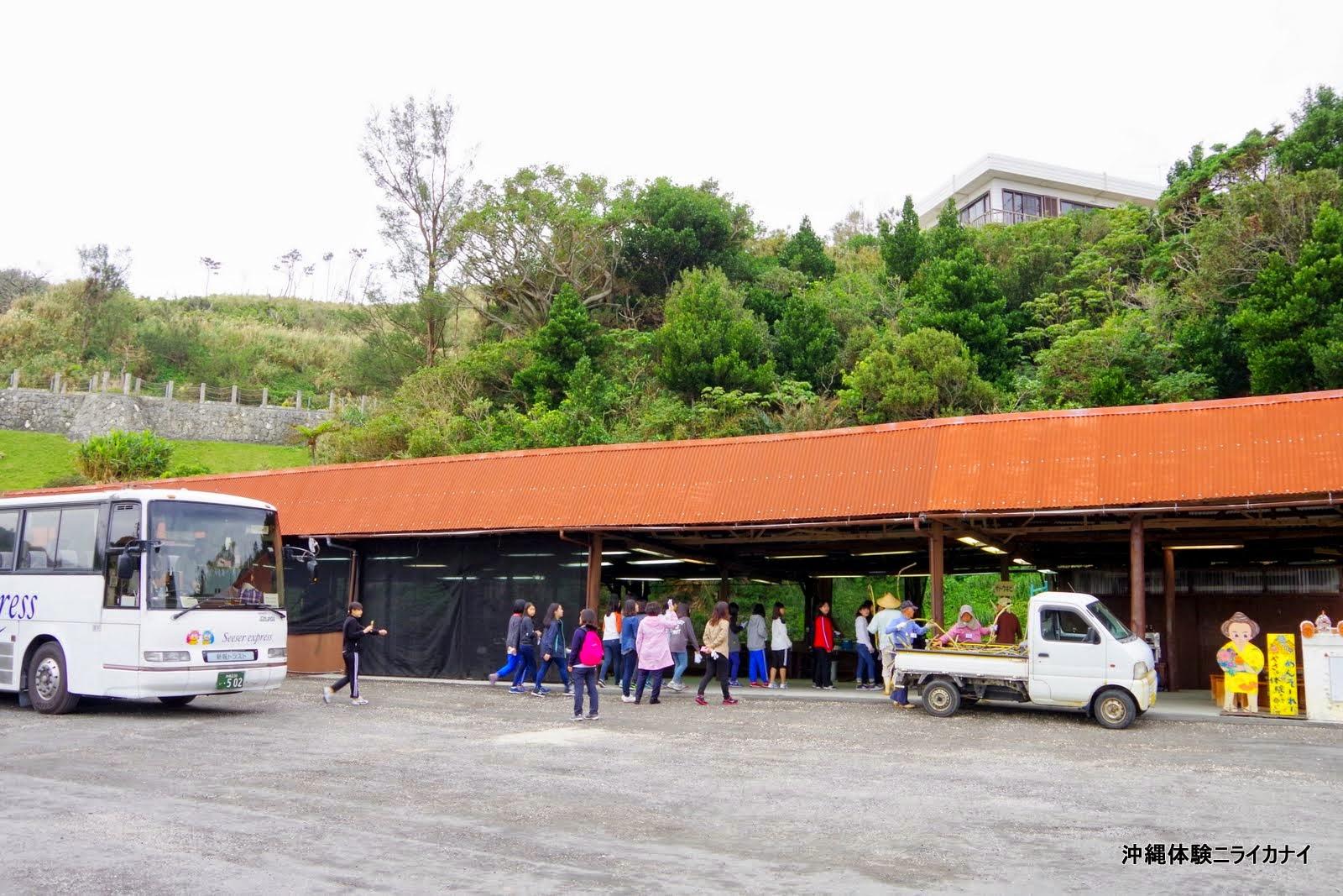 沖縄体験ニライカナイ ~恩納村の体験/観光ブログ~