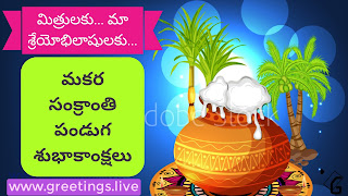 Happy Festival Telugu Makara Sankranthi wishes