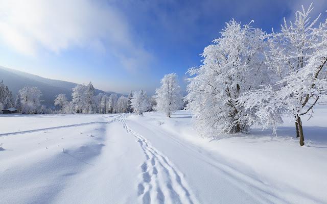 Winterlandschap met laag sneeuw