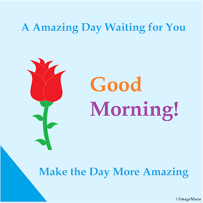Good Morning Images, Good Morning Photos, Good Morning Status photos, HD Images for Good Morning Status, Free Download pictures