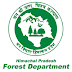 Himachal Pradesh Forest Department Recruitment 2021 Apply For 311 Posts Last Date: 19 August