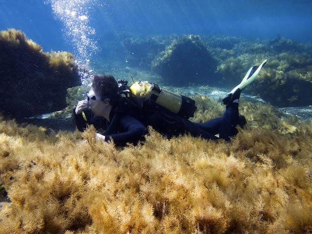 Scubadiving in Cyprus