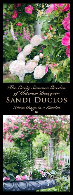 The Early Summer Garden of Interior Designer