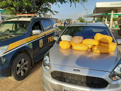 Em Canapi/AL, PRF prende homem e apreende mais de 10 kg de maconha na BR-316