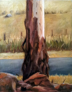 Oil painting of the trunk of a young manna gum, with a bitumen road and tall grass behind.