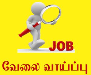 Jaffna Jobs