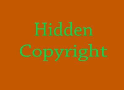 3 Cara Mengambil Foto di Internet tanpa Terkena Copyright dengan Smartphone