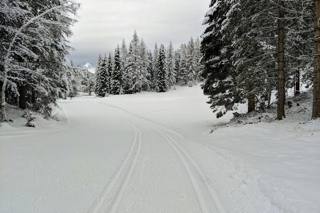 Things to do in Innsbruck for Christmas: Cross country skiing