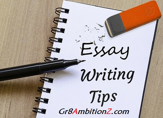 Essay writing tips for ibps po vii essays for ibps po important what is an essay altavistaventures Image collections