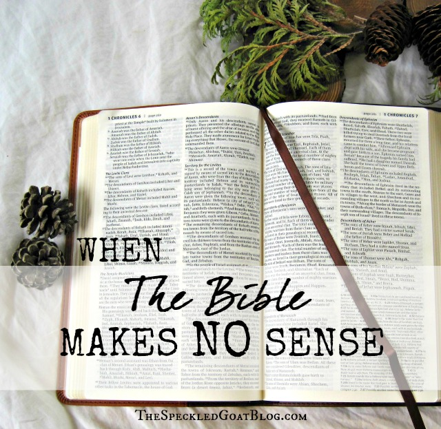 When the Bible Makes No Sense: Practical Steps for Finding Clarity in Scripture
