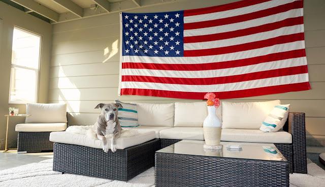Enclosed Patio Decor and Home Design Inspo American Staffordshire Pitbull