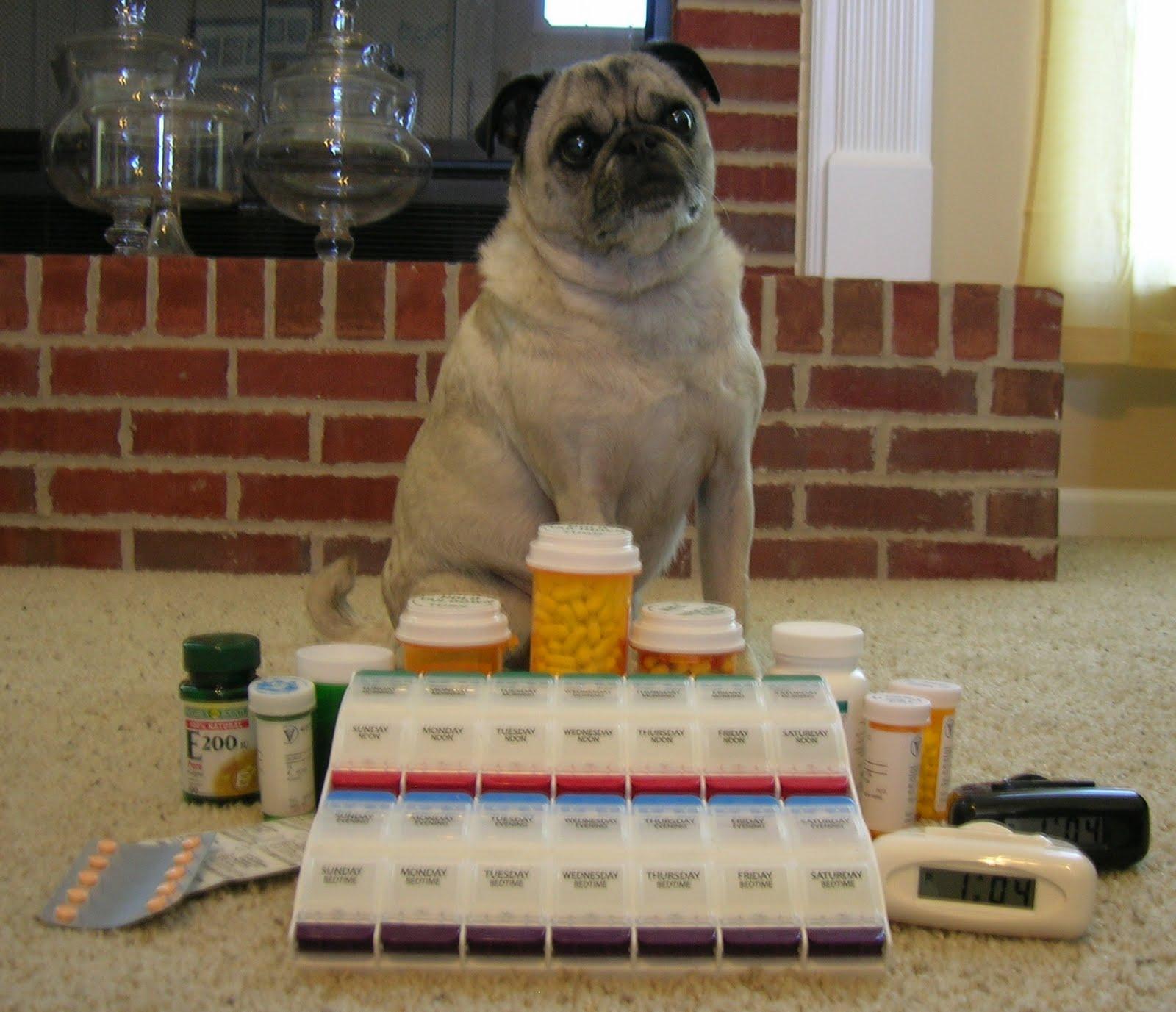 Prednisone Pill Looks