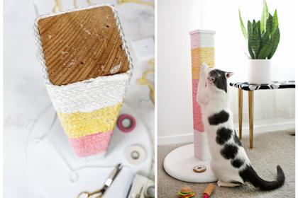 cara membuat garukan kucing (cat scratching post) untuk kucing