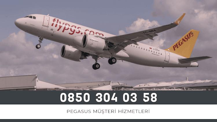 Pegasus İletişim Bilgileri