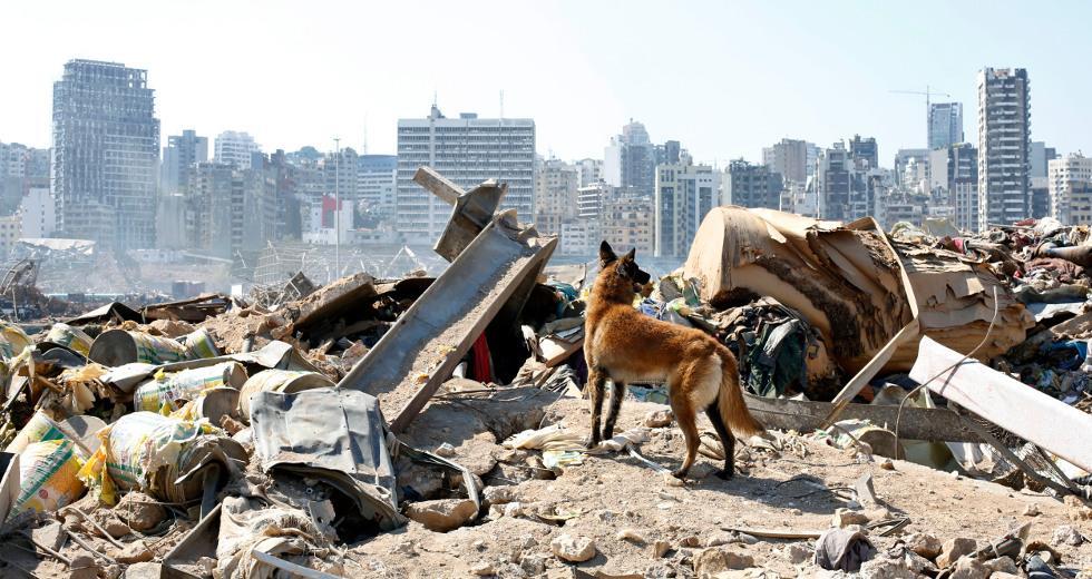 Σενάρια «ξένης επίθεσης» εξετάζει τώρα η κυβέρνηση του Λιβάνου