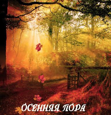 Осень в МИАМ, Размышления, Сам себе режиссёр, Ирина Белоусова