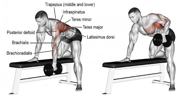5 Reasons You Need to One-Arm Dumbbell Row