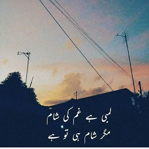 Best Poetry Urdu on love