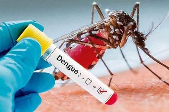 Casos de dengue na BA crescem 685%; estado não está na lista de prioridade do governo