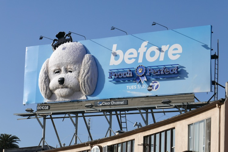 Pooch Perfect Before 3D series billboard