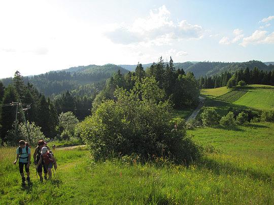 Wspinamy się na pierwsze wzniesienie za Przełęczą Knurowską - Turkówka (835 m n.p.m.).