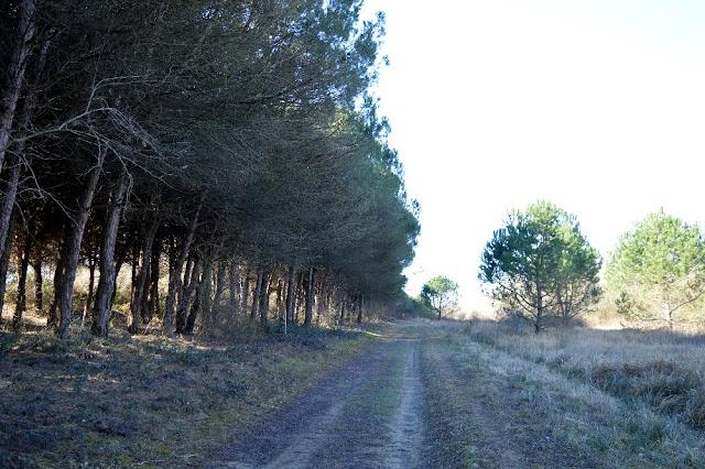 percorso valle vecchia brussa