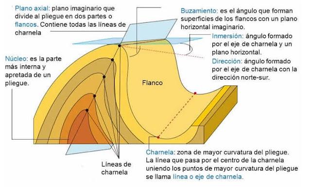 Partes de un pliegue