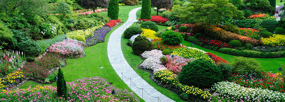 Looking For Best Garden Landscape Ideas? Check These 50 Of Most Beautiful  Garden And Landscaping