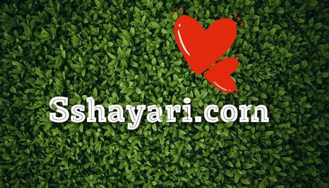 shero shayari in hindi,  www.sshayari.com