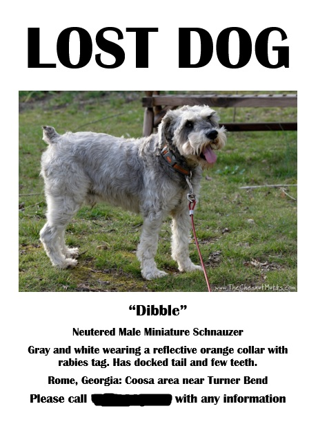 How to find a lost dog, make a lost dog sign