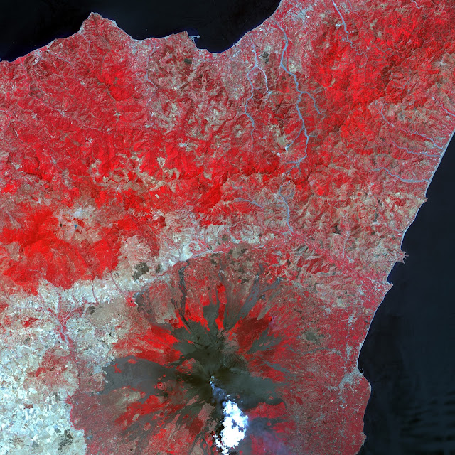Located on the Italian island of Sicily, Mt. Etna is one of the world's most active volcanoes. In this image of the volcano in 2001, a plume of steam and smoke rising from the crater drifts over some of the many dark lava flows that cover its slopes.