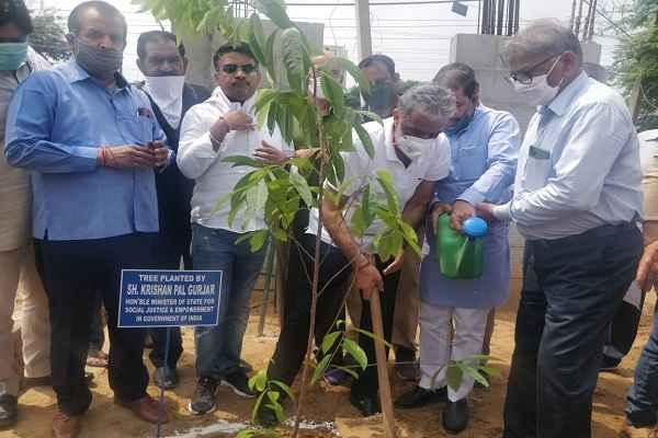minister-krishan-pal-gurjar-plantation-in-sector-31-town-park-news