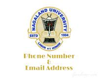 Nagaland University Phone Number