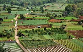 Tempat Wisata di  Sumatera Utara berastagi