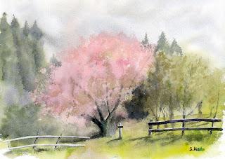八重桜 水彩スケッチ 南東向きの斜面に咲いていた八重桜 千葉県 秋元牧場で。