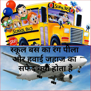 School bus yellow colour, and aeroplane has white colour, general knowledge questions, why happened so