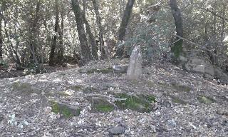 Puig Sesarques (Sostre comarcal Pla de l'Estany)