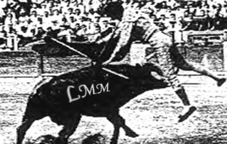 """Cette image montre le célèbre torero Manolete encorné par Islero. Islero, 495 kg, est le cinquième taureau (le second pour Manolete) de la corrida tenue le 28 août 1947 dans les arènes de Linares, en Andalousie.  Petit taureau aux cornes afeitées et presbyte, ce qui le rend dangereux car ne chargeant pas droit. Manolete réalisant ce défaut, demande à ses hommes de le châtier (piques, banderilles, passes) pour l'épuiser et croit à tort que la bête ne bougerait plus au moment de l'estocade : au moment de porter cette estocade, Manolete laisse sa muleta devant ses jambes mais Islero par un mouvement réflexe lui porte un coup de corne à la cuisse, le soulève, faisant retomber le matador sur sa corne.  Une légende veut qu'Islero ait essayé à plusieurs reprises d'encorner à nouveau Manolete avant de mourir. Des militants anti-corridas commercialisent parfois des figurines d'Islero aux abords des arènes. Sur cette photo en noir et blanc le matador est litteralement soulevé par le taureau à bout de cornes. L'image illustre le poème """"islero mon héros"""" du Marginal Magnifique que le grand poète veut un hommage au taureau Islero. Celui-ci apparaît alors comme un symbole contre les tortures infligées dans les arènes par ses frères, il est celui qui a osé changé le cours des choses, puisque tout est écrit d'avance et que les taureaux n'ont aucune chance de s'en sortir dans l'arène. Ces corridas ne sont pas un combat d'égal à égal, comme l'on veut nous le faire croire, et les chiffres parlent d'eux-mêmes : le nombre de matadors morts est insignifianten comparaison de celui de taureaux qui ont laissé leur vie. Le Marginal Magnifique insiste bien sur le fait que Manolete et tous les toreros sont des bouchers et des assassins. Grâce à ce magnifique poème du Marginal qui n'est pas moins magnifique, Islero devient un symbole de lutte et de révolte contre toutes les oppressions, les injustices et tortures infligées à un être vivant."""