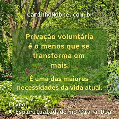 Privação voluntária é o menos que se transforma em mais.  É uma das maiores necessidades da vida atual. Livro A Espiritualidade no Dia a Dia