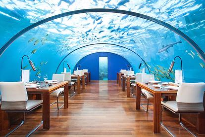 restaurantes-exoticos-06