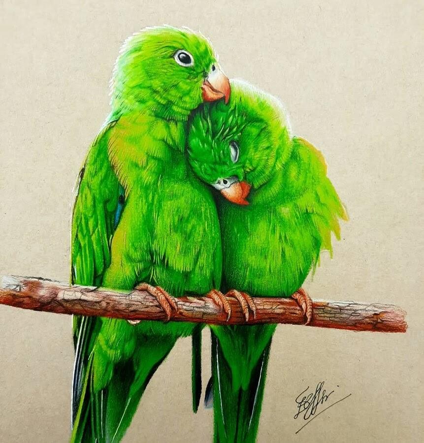 02-Green-parrots-Bele-www-designstack-co