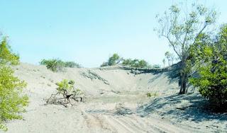 Academia de Ciencias reclama protección para el Monumento Natural Dunas de Bani