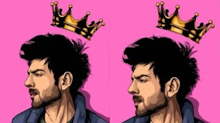 kartik aaryan now got 'prince of hearts' title